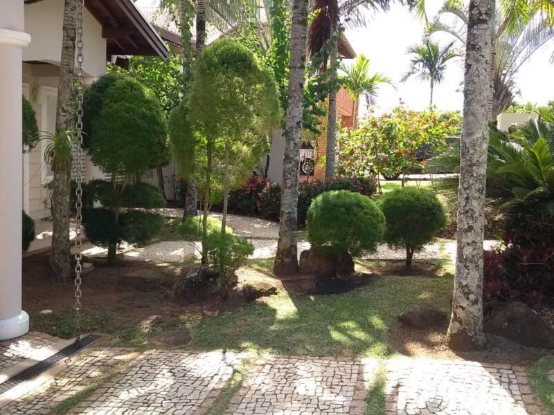 Paisagismo e manutenção de jardim em Campinas/SP