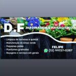 D.F. Jardinagem e Paisagismo