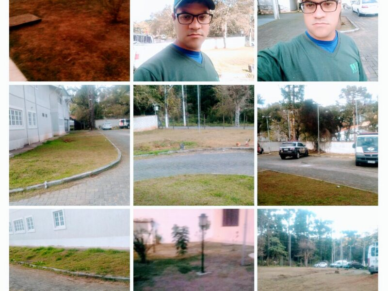 Jardinagem, paisagismos e limpeza de terrenos