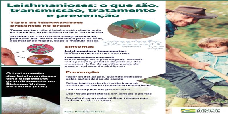 Saiba quais são os tipos, os sintomas e a transmissão das leishmanioses em humanos — Português (Brasil)