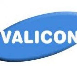 LOGO Valicon